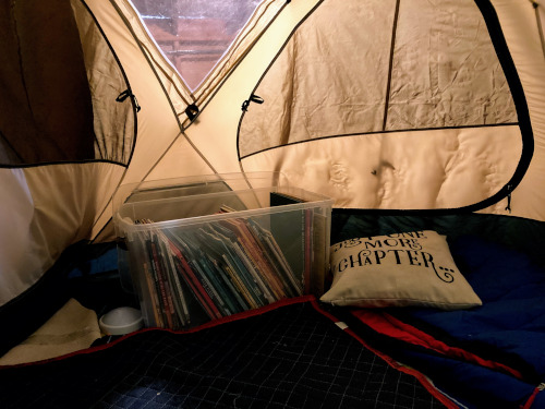 "View from inside the tent. Blankets on floor, books in a plastic bin, and a pillow that reads ""Just One More Chapter""."