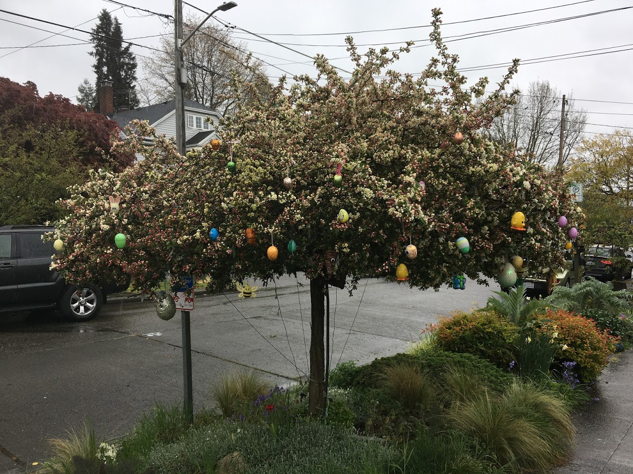 Tree with hanging decorative eggs for Easter.