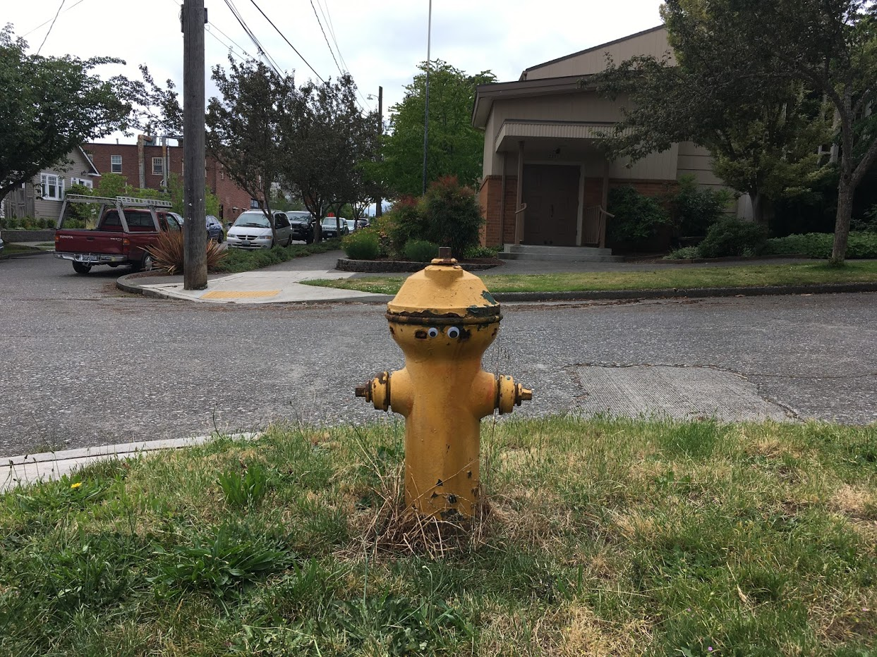 Fire hydrant with two eyes stuck to it.