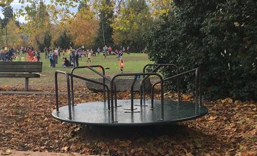 merry-go-round picture