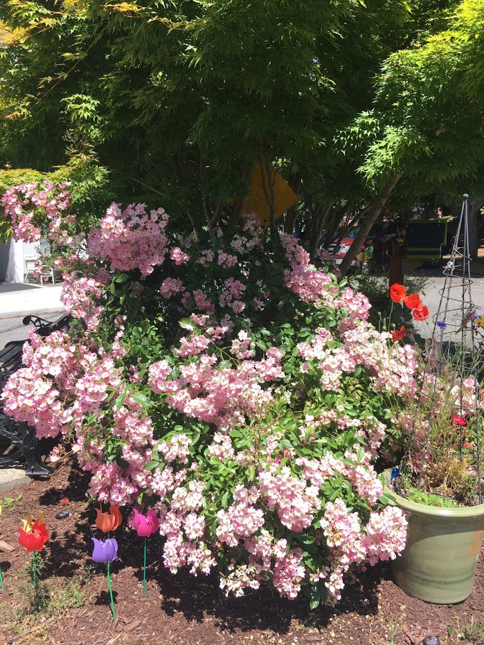 Bush with pink flowers in a median surrounded by brightly colored plastic tulips.