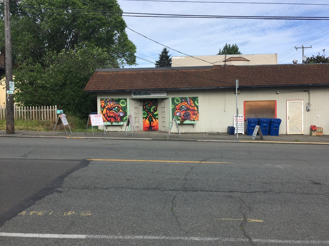 Mural on tatoo place. Picture of orange striped cats.